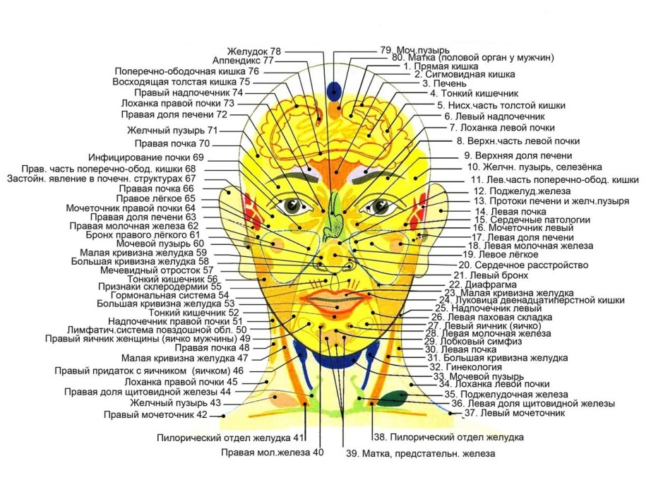 Валик Ляпко Лицевой 4